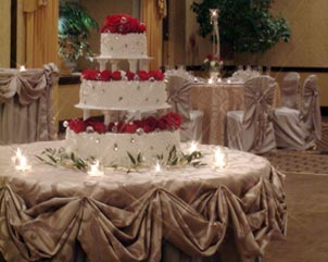 NAPHIHF_Hilton_Lisle_Napperville_wedding_portal_8